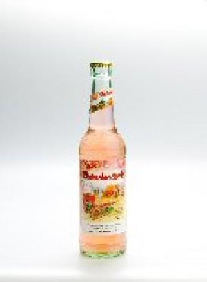 Lütauer Apfel Himbeerschorle 24x0,33